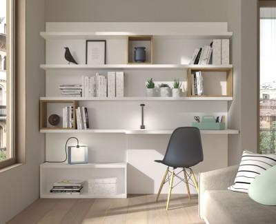 Büro mit Bücherregal